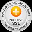 SSL Secure Website